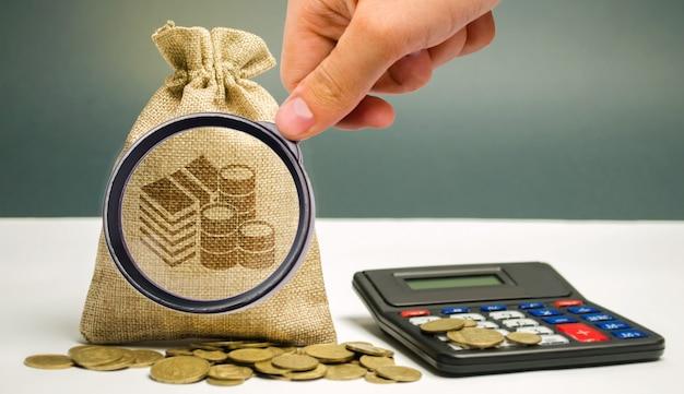 La lente d'ingrandimento esamina la borsa dei soldi Foto Premium