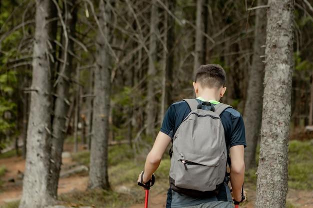 Un uomo è un turista in una pineta con uno zaino. una gita nella foresta. riserva di pini per passeggiate turistiche. un giovane in un'escursione in estate, vista posteriore. Foto Premium