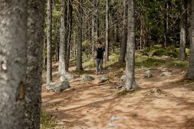 Un uomo è un turista in una pineta con uno zaino. un'escursione nella foresta. riserva di pini per passeggiate turistiche. un giovane in un'escursione in estate. Foto Premium