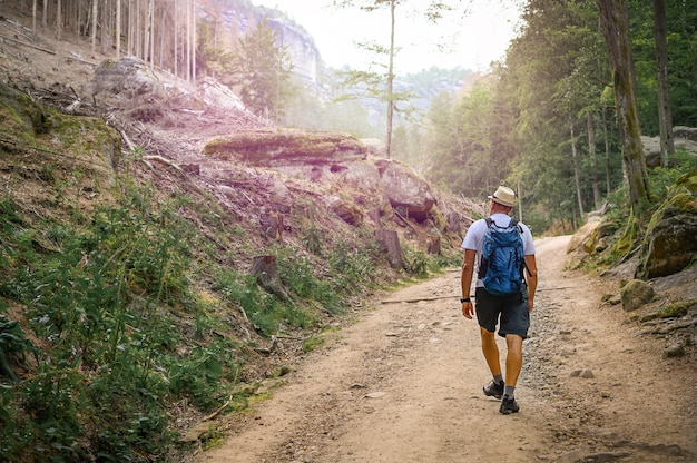 L'uomo con lo zaino sta camminando lungo il sentiero di pietra nella splendida natura Foto Premium