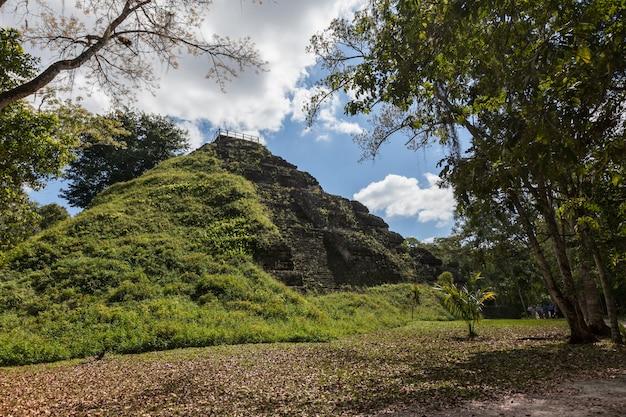 Tempio maya piramidi scavo archeologico nella foresta pluviale verde del parco nazionale di tikal Foto Premium