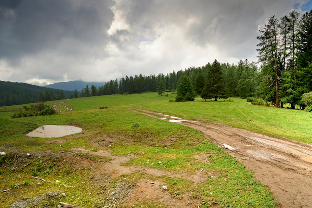 Strada di montagna offuscata dalle piogge. fuoristrada in montagna. cupo cielo nuvoloso e pioggia in montagna. altai Foto Premium