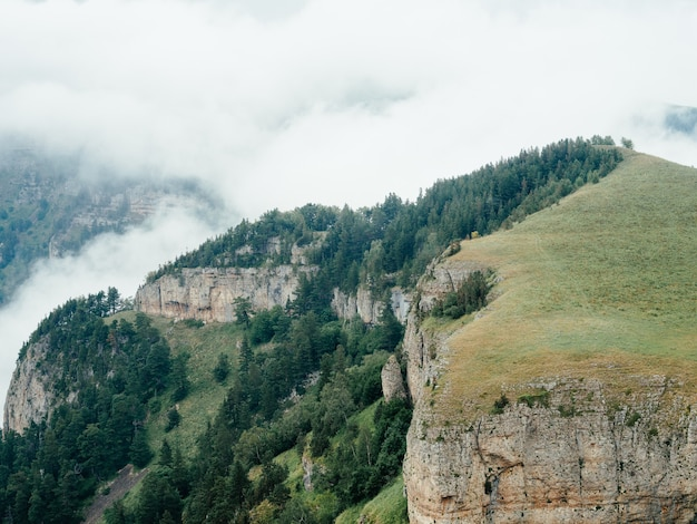 Montagne natura aria fresca nebbia di vapore alberi bellissimo paesaggio. Foto Premium