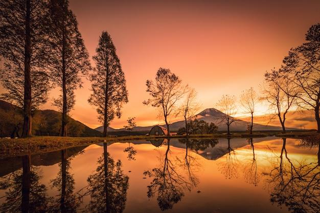 Mt. fuji con grandi alberi e lago all'alba a fujinomiya, giappone. Foto Premium