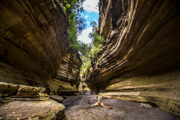 Canyon del parco nazionale di naivasha hells gate pieno di animali. kenya walking o bike safari Foto Premium