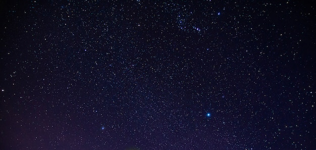 Stella di notte Foto Premium