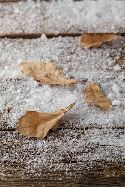 Foglie di quercia nella neve Foto Premium