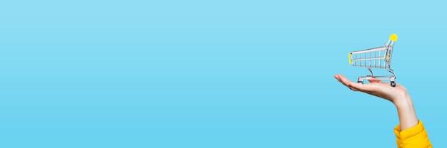 Canestro di opping in mani femminili su un blu. banner. concetto di acquisto, shopping, shopping online Foto Premium