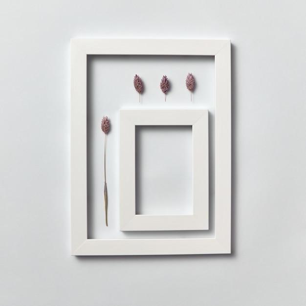 Composizione organica da pigne e cornice rettangolare vuota per il testo su un muro grigio chiaro. vista dall'alto. Foto Premium