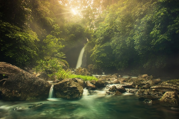 Palak siring cascata al mattino con la foresta di bellezza al mattino Foto Premium