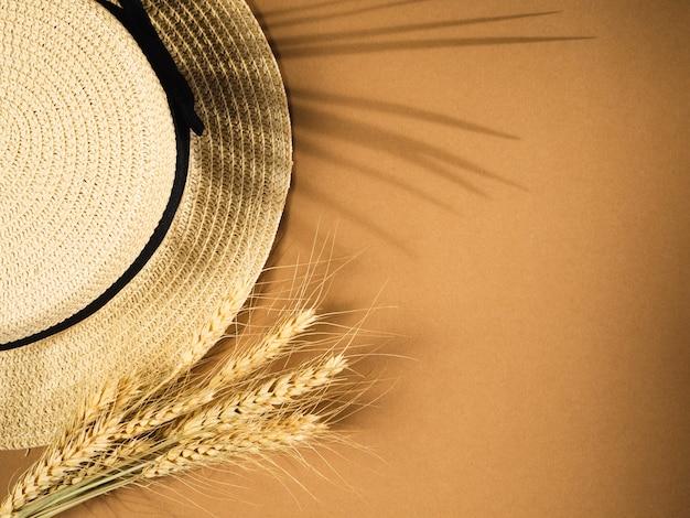Ombre di foglia di palma su uno sfondo Foto Premium