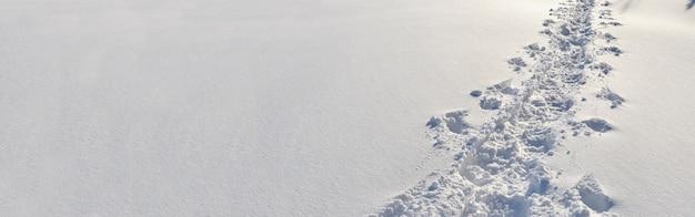 Vista panoramica sulle tracce dell'escursionista camminato nella neve fresca Foto Premium