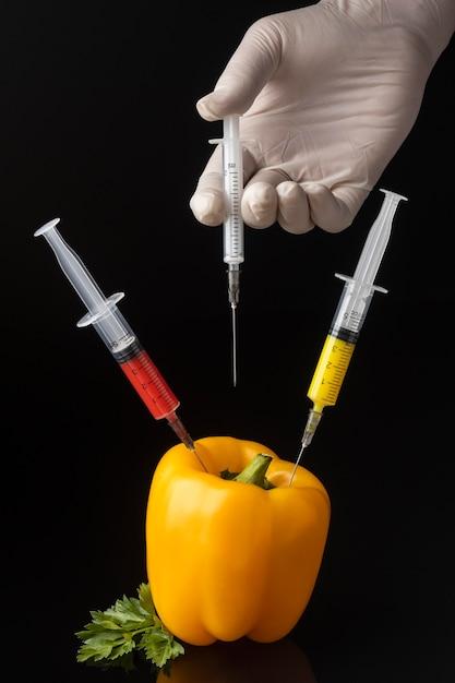 Persona che inietta le siringhe nel peperone dolce ogm Foto Premium