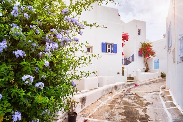 Via pittoresca della città di naousa sull'isola di paros, grecia Foto Premium