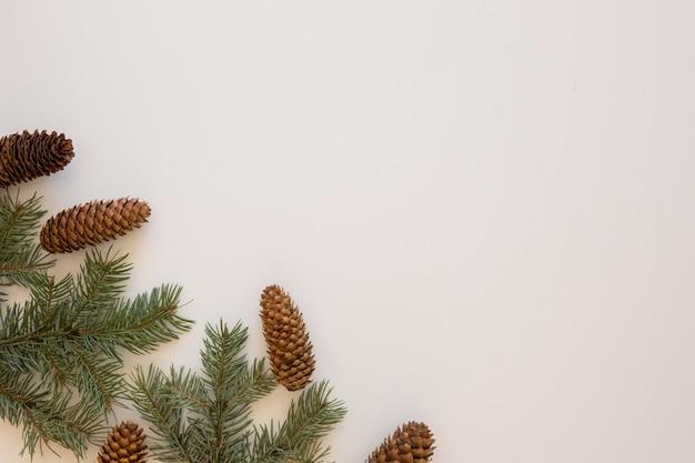 Aghi di pino e coni di conifere copiano lo spazio Foto Premium