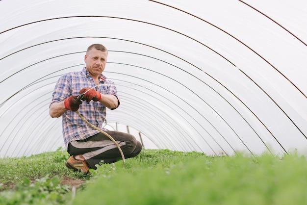 Ritratto di un uomo adulto in una serra, annaffiare le piante dal tubo Foto Premium
