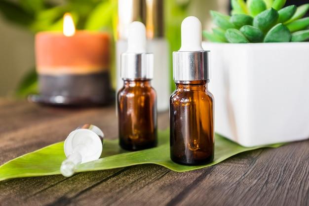 Pianta del cactus in vaso con una bottiglia di olio essenziale di due aroma sulla foglia verde sopra tavolo in legno Foto Premium