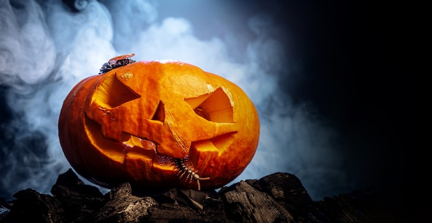 Zucca a forma di teschio per halloween Foto Premium