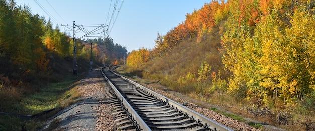 La ferrovia attraversa un bellissimo bosco autunnale con alberi colorati. Foto Premium