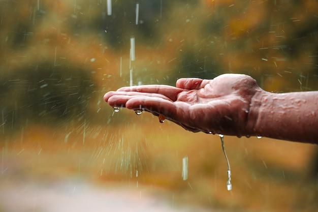 Acqua piovana che cade a portata di mano Foto Premium