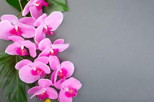Romantico ramo di orchidea rosa su sfondo grigio. Foto Premium
