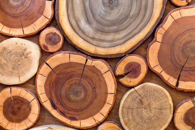 Ceppi screpolati marroni e gialli morbidi ecologici solidi naturali non verniciati di legno rotondi, sezioni del taglio dell'albero con le dimensioni e le forme differenti degli anelli annuali, struttura del fondo. Foto Premium