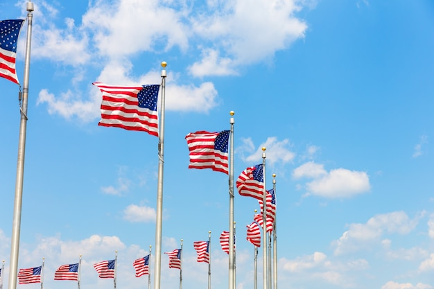 Fila di bandiere americane a washington dc Foto Premium