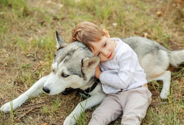 Messa a fuoco selettiva del bel cane. piccolo cane petting offuscata del bambino Foto Premium