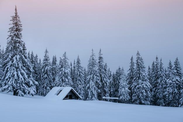 Foresta innevata nei carpazi. una piccola casa di legno accogliente coperta di neve. il concetto di pace e ricreazione invernale in montagna. felice anno nuovo Foto Premium