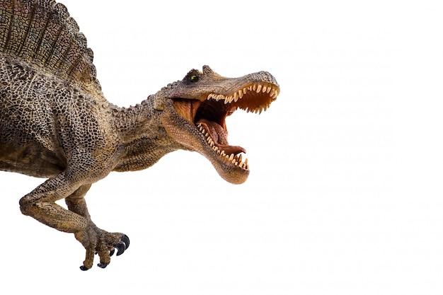 Spinosaurus, dinosauro su sfondo bianco Foto Premium
