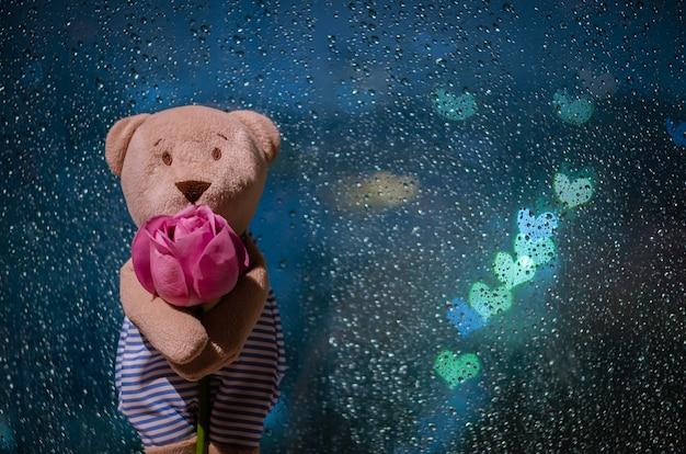 Orsacchiotto di peluche in piedi con una rosa alla finestra quando piove con luci colorate bokeh a forma di amore. Foto Premium