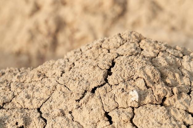 Texture sabbia crump beige o marrone. Foto Premium