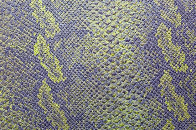 Consistenza della pelle di serpente in colori vivaci Foto Premium