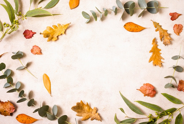 Vista dall'alto di foglie autunnali e vegetazione Foto Premium