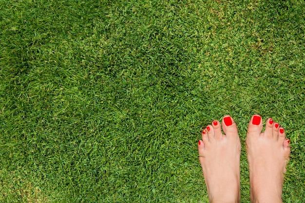 Vista dall'alto dei piedi femminili sull'erba con le dita rosse Foto Premium