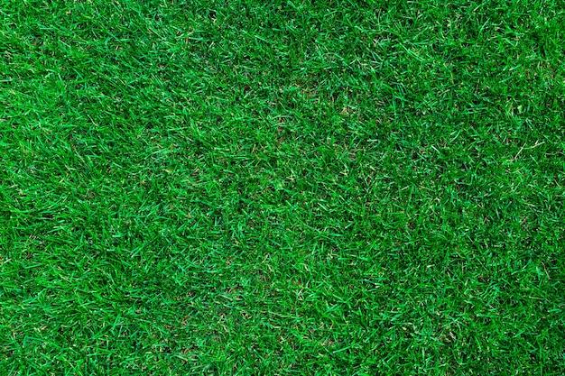 Vista dall'alto di erba verde. sfondo prato con texture Foto Premium