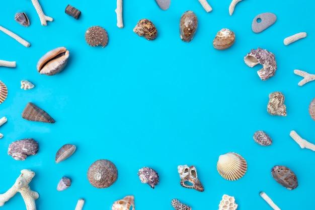 Vista dall'alto di conchiglie sull'azzurro. lay piatto Foto Premium