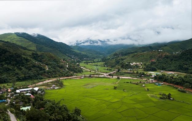 Vista dall'alto campo di riso terrazzato a mae cham chiangmai thailandia del nord Foto Premium
