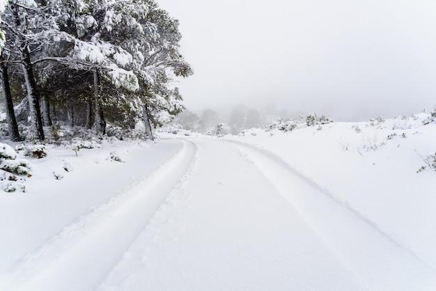Tracce delle tracce di pneumatici di un'auto sulla neve su una strada collinare. Foto Premium