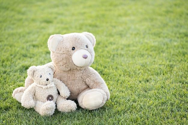 Due simpatici giocattoli orsacchiotto seduti insieme sull'erba verde in estate. Foto Premium