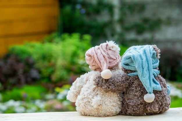 Due orsacchiotti seduti sulla panchina e abbracciati, vista posteriore. Foto Premium