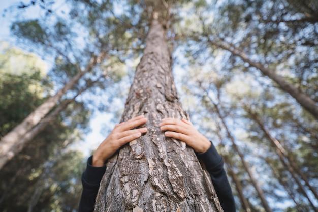 Persona irriconoscibile che abbraccia l'albero Foto Premium