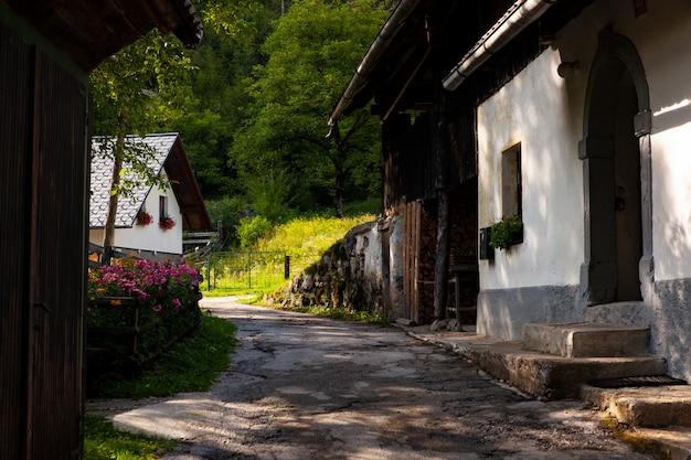Vista dello chalet sloveno a stara fuzina, slovenia Foto Premium