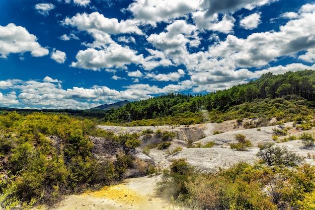 L'attività vulcanica e la foresta di conifere abbelliscono nel paese delle meraviglie di wai-o-tapu, nuova zelanda Foto Premium