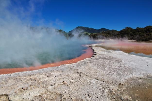 Parco geotermico di wai-o-tapu, rotorua, nuova zelanda Foto Premium
