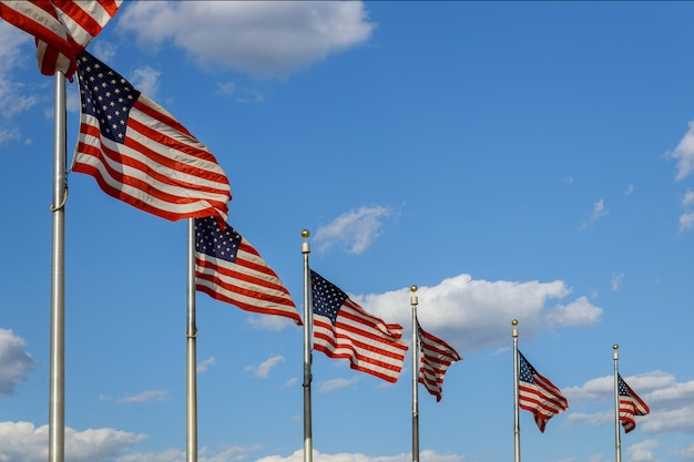 Bandiere americane di washington monument nel dc usa del distretto di columbia Foto Premium