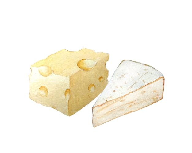 Blocchi di formaggi disegnati a mano dell'acquerello. Foto Premium
