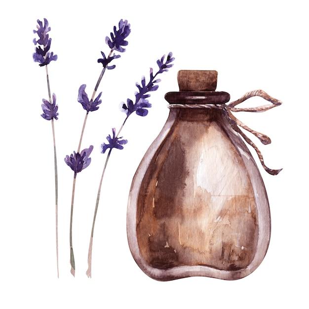 Illustrazione dell'acquerello con fiala e piante aromatiche Foto Premium