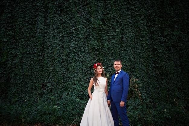 Sposi sullo sfondo del muro di verde Foto Premium