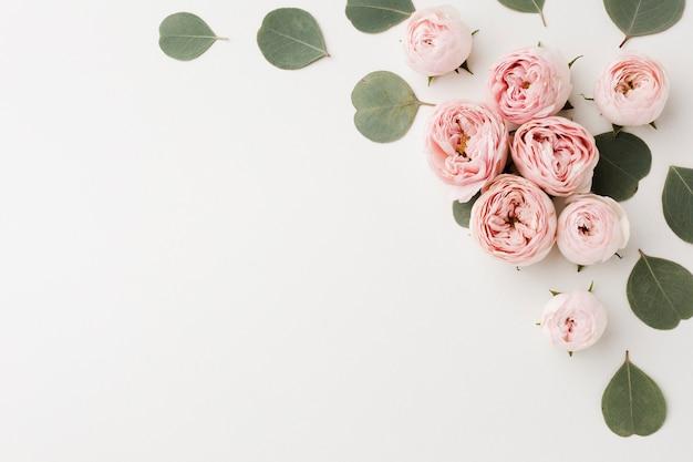 Sfondo bianco spazio copia con rose e foglie Foto Premium